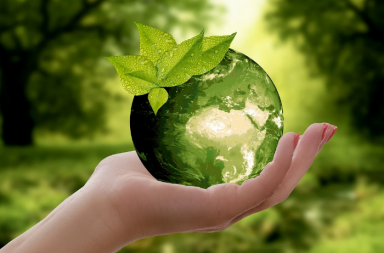 Nachhaltigkeit - Versicherungsmakler mit nachhaltigen Produkten